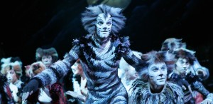 Cats the Musical, Nov 5-15
